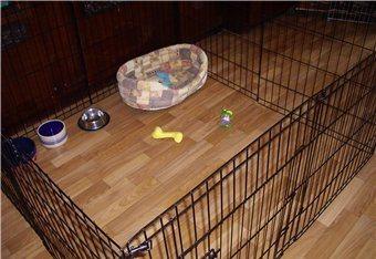 Как ограничить место щенка в доме