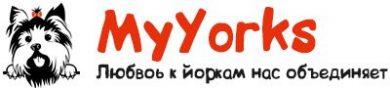 MyYorks